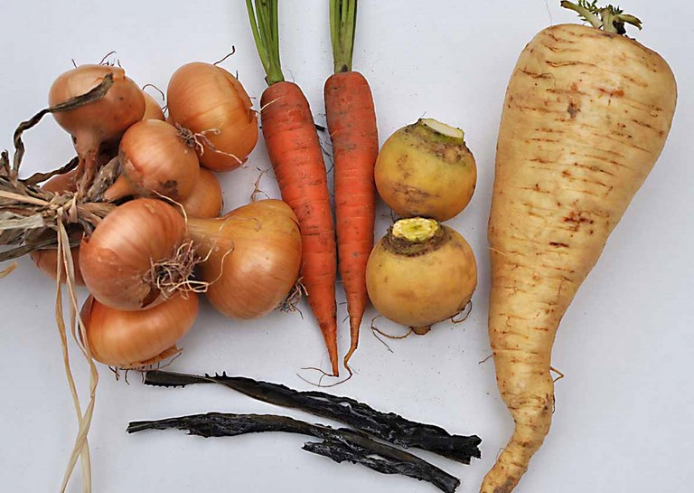 soupe navet carotte
